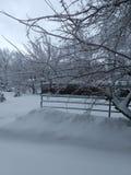 Χειμερινή γοητεία στοκ εικόνα με δικαίωμα ελεύθερης χρήσης