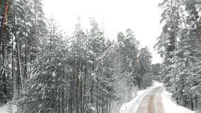 Χειμερινή εθνική οδός κατά μια χιονώδη δασική, εναέρια άποψη με τον κηφήνα απόθεμα βίντεο