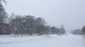 Χειμερινή εικόνα απόθεμα βίντεο