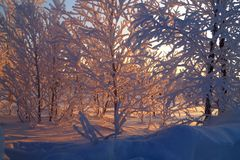 Χειμερινή ημέρα σε Leppäjärvi στοκ εικόνα με δικαίωμα ελεύθερης χρήσης