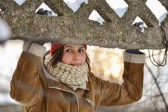 Χειμερινή ημέρα Στοκ εικόνες με δικαίωμα ελεύθερης χρήσης