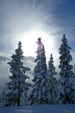 Χειμερινή ηλιοφάνεια Στοκ φωτογραφία με δικαίωμα ελεύθερης χρήσης