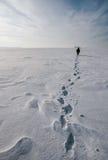 Χειμερινή θάλασσα Στοκ Φωτογραφία