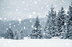 Χειμερινή κάρτα Χριστουγέννων με τα δέντρα και snowflakes έλατου Στοκ Φωτογραφίες