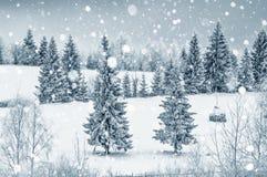 Χειμερινή κάρτα Χριστουγέννων με τα δέντρα και snowflakes έλατου Στοκ Εικόνα