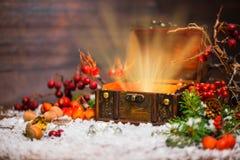 Χειμερινή νεράιδα Χριστουγέννων με το ελαφρύ θαύμα στο ανοιγμένο στήθος Backg Στοκ Εικόνες