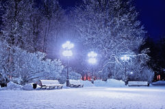 Χειμερινή νύχτα στο πάρκο πόλεων Χειμώνας χειμερινών τοπίων στο χιονώδες πάρκο νύχτας με τους πάγκους που καλύπτονται με το χιόνι Στοκ Εικόνες