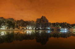 Χειμερινή νύχτα στο πάρκο Στοκ Φωτογραφία