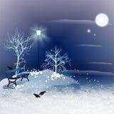 Χειμερινή νύχτα ελεύθερη απεικόνιση δικαιώματος