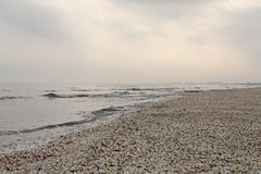 Χειμερινή παραλία των κοχυλιών σε Μαύρη Θάλασσα στοκ εικόνες