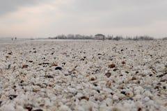 Χειμερινή παραλία των κοχυλιών σε Μαύρη Θάλασσα στοκ εικόνα