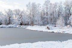 Χειμερινή σκηνή με την παγωμένα λίμνη και το χιόνι στα δέντρα στην όχθη της λίμνης INT Στοκ Εικόνες