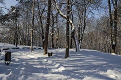 Χειμερινή σκηνή με τον πάγκο πάρκων, Sofia Στοκ Εικόνα
