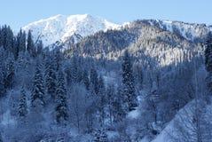 Χειμερινή σκηνή Στοκ Φωτογραφία
