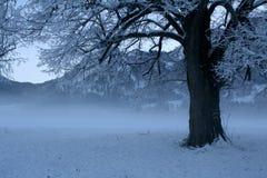 Χειμερινή σκηνή 5 Στοκ φωτογραφία με δικαίωμα ελεύθερης χρήσης
