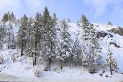 Χειμερινή σκηνή Tahoe λιμνών Στοκ Φωτογραφίες