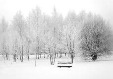 Χειμερινή φύση, μόνη παραλία στο χιόνι στοκ φωτογραφία