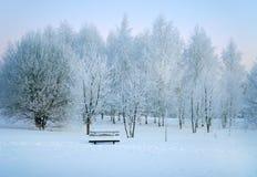 Χειμερινή φύση, μόνος πάγκος στο χιόνι στοκ φωτογραφία