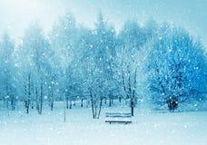 Χειμερινή φύση, μόνος πάγκος στο χιόνι στοκ εικόνα