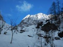 Χειμερινή φύση στο εθνικό πάρκο Triglav Στοκ Εικόνες