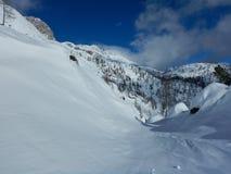 Χειμερινή φύση στο εθνικό πάρκο Triglav Στοκ Εικόνα