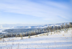 Χειμερινή φύση της Σιβηρίας Στοκ Φωτογραφίες
