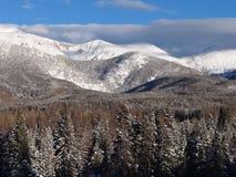 Χειμερινή χώρα των θαυμάτων στα βουνά του Κολοράντο Στοκ Εικόνα