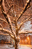 Χειμερινή χώρα των θαυμάτων Στοκ εικόνες με δικαίωμα ελεύθερης χρήσης