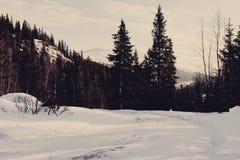 Χειμερινή χώρα των θαυμάτων στοκ φωτογραφίες με δικαίωμα ελεύθερης χρήσης