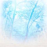 Χειμερινή ψύχρα Στοκ Εικόνα