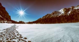 Χειμερινοί δάσος και λόφοι Στοκ φωτογραφίες με δικαίωμα ελεύθερης χρήσης