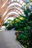 Χειμερινοί κήποι του Σέφιλντ Στοκ Εικόνες