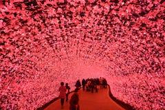 Χειμερινοί φωτισμοί στην Ιαπωνία Στοκ εικόνες με δικαίωμα ελεύθερης χρήσης