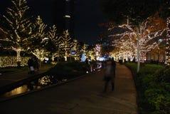 Χειμερινοί φωτισμοί στο Τόκιο στοκ φωτογραφίες