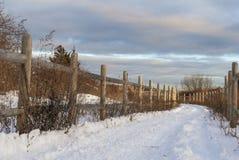 Χειμερινοί όροι στην παράκτια πορεία ποδηλάτων στοκ εικόνες