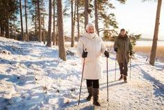 Χειμερινός αθλητισμός στη Φινλανδία - σκανδιναβικό περπάτημα στοκ εικόνα