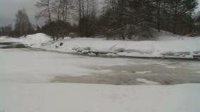Χειμερινός δασικός και παγωμένος ποταμός μια δυσάρεστη κρύα ημέρα φιλμ μικρού μήκους