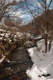 Χειμερινός δασικός ποταμός Στοκ εικόνες με δικαίωμα ελεύθερης χρήσης