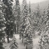 Χειμερινός γύρος Στοκ Φωτογραφίες
