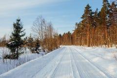 Χειμερινός δασικός δρόμος στην ηλιόλουστη ημέρα στη Φινλανδία Στοκ φωτογραφίες με δικαίωμα ελεύθερης χρήσης