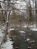 Χειμερινός κολπίσκος στοκ εικόνες