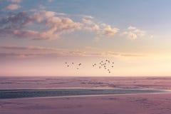 Χειμερινός ορίζοντας σε μια παγωμένη λίμνη στοκ εικόνες με δικαίωμα ελεύθερης χρήσης
