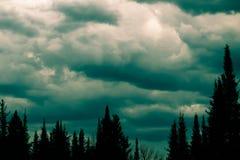 Χειμερινός ουρανός Στοκ εικόνες με δικαίωμα ελεύθερης χρήσης