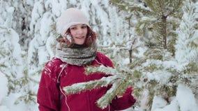 Χειμερινός περίπατος μέσω ενός δάσους απόθεμα βίντεο
