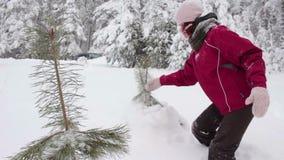 Χειμερινός περίπατος μέσω ενός δάσους φιλμ μικρού μήκους