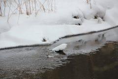 Χειμερινός ποταμός Στοκ εικόνες με δικαίωμα ελεύθερης χρήσης