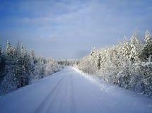 Χειμερινός δρόμος μέσω του δάσους Στοκ Φωτογραφία