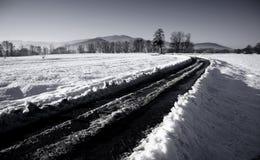 Χειμερινός δρόμος μέσω των χιονωδών τομέων Στοκ Εικόνες