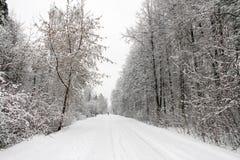 Χειμερινός δρόμος σε μια δασώδη περιοχή, το ευρωπαϊκό μέρος της Ρωσίας Στοκ εικόνα με δικαίωμα ελεύθερης χρήσης