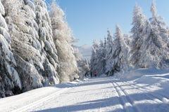 Χειμερινός δρόμος στα βουνά καλυμμένα φρέσκα δέντρα χι&omi Στοκ φωτογραφίες με δικαίωμα ελεύθερης χρήσης